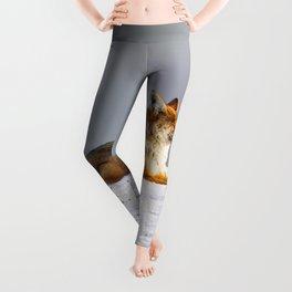 Feelin' Foxy Leggings