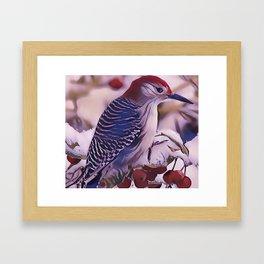 The Red Bellied Woodpecker Framed Art Print