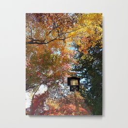 Under the trees Metal Print