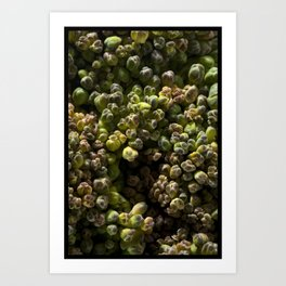 SPROUT #1 Art Print