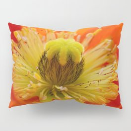 Poppy red macro 071 Pillow Sham