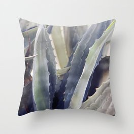 Winter Agave Throw Pillow