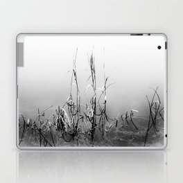 Echoes Of Reeds 1 Laptop & iPad Skin