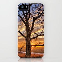 Winter Cottonwood iPhone Case