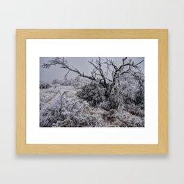 Frozen Desert Framed Art Print