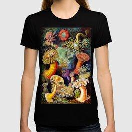 Under the Sea : Sea Anemones (Actiniae) by Ernst Haeckel T-shirt