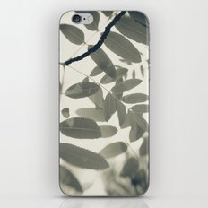 Light Green Forest Leaves Abstract iPhone & iPod Skin