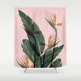 Bird of Paradise Flower Vintage Shower Curtain