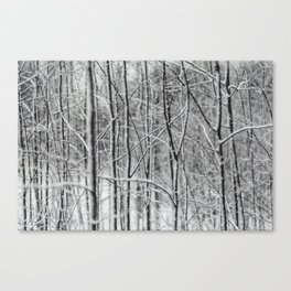 Winter gris Canvas Print