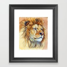 Lion 851 Framed Art Print