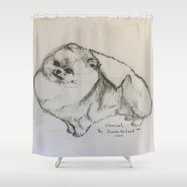 "Pomeranian hand free drawing "" Daniel"" Shower Curtain"