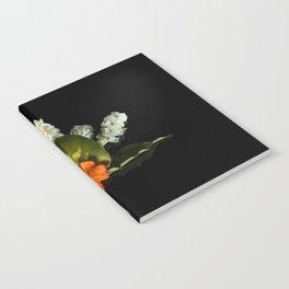 Abanico Notebook