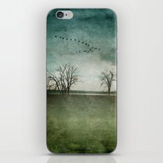 Onondaga Lake Park - Susan Weller iPhone & iPod Skin