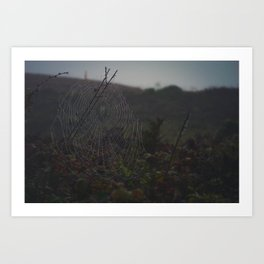 Grand Web Art Print
