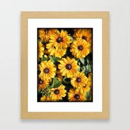 Abundance ~ Yellow Coneflowers / Black-eyed Susans against a Textured Background ~ Vintage Photo Framed Art Print