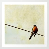 robin Art Prints featuring Robin by Beverly LeFevre