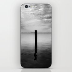 Lake and Swan. Landscape Photography. iPhone & iPod Skin