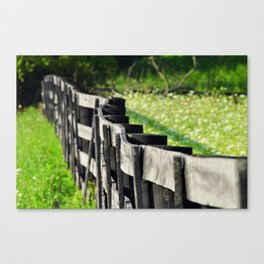 Horse Fence Canvas Print