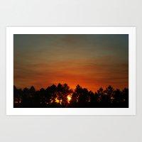 Sunset in Orlando,Florida Art Print
