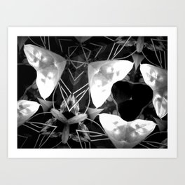 Plant Life After Dark Art Print