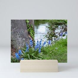 River Wensum bluebells Mini Art Print