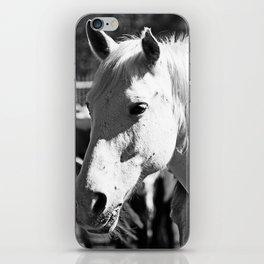 White Horse-B&W iPhone Skin