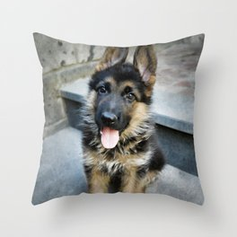 AARON 30g Throw Pillow