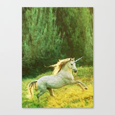 Horsey Business. Canvas Print