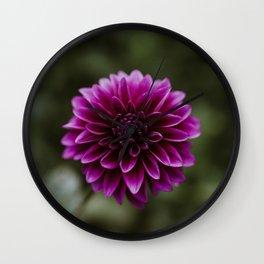 Purple Dahlia Wall Clock