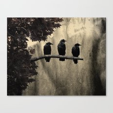 Three Like Minded Crows Canvas Print
