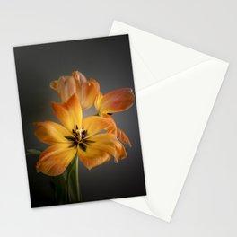 Tulips - flower art - springtime - flower photography Stationery Cards