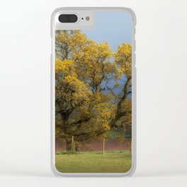 Sunlight before the Storm Clear iPhone Case