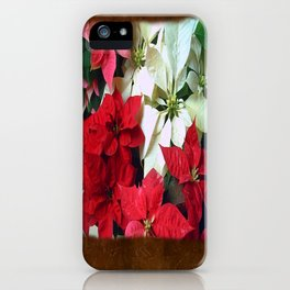 Mixed color Poinsettias 1 Blank P3F0 iPhone Case