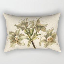 1800s Lithograph Amazon Lily, Eucharis Amazon Grandiflora Flower Rectangular Pillow