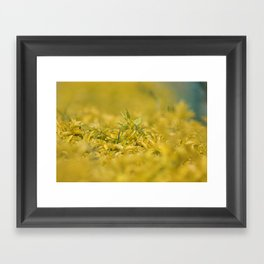 Yellow, Yellow, Super Fellow Framed Art Print