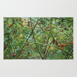 Red berry tangle Rug