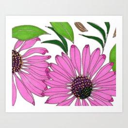 Echinacea by Mali Vargas Art Print