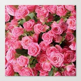 Pink Rose Floral Pattern Canvas Print