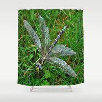 dragonfly Shower Curtains featuring dragonfly by  Agostino Lo Coco