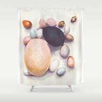 eggs Shower Curtains featuring Eggs by Bridget Davidson
