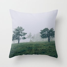 Mystic Forest in Slovenia 04 Throw Pillow