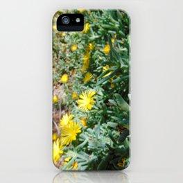 Ice Plant Cascade iPhone Case
