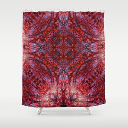 Seventh Heaven's Gate Shower Curtain