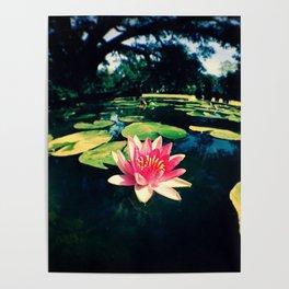 Sugar Vat Flower Poster