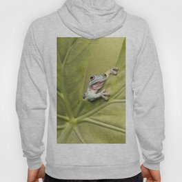 White's Tree Frog Hoody