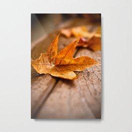 Autumn Cometh Metal Print