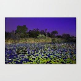 Lillies at Blue Hour Canvas Print