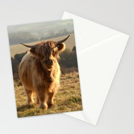 Young Highland Cow Stationery Cards