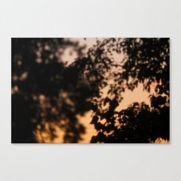 Late Night View (2/3) Canvas Print
