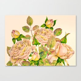 Sunrise of Peachy Pink Roses Canvas Print